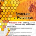 Pszczoły Jasło